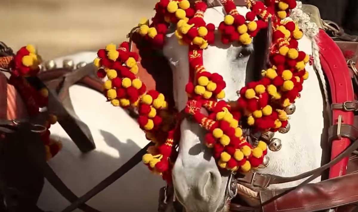 plano-casetas-caballos-jerez